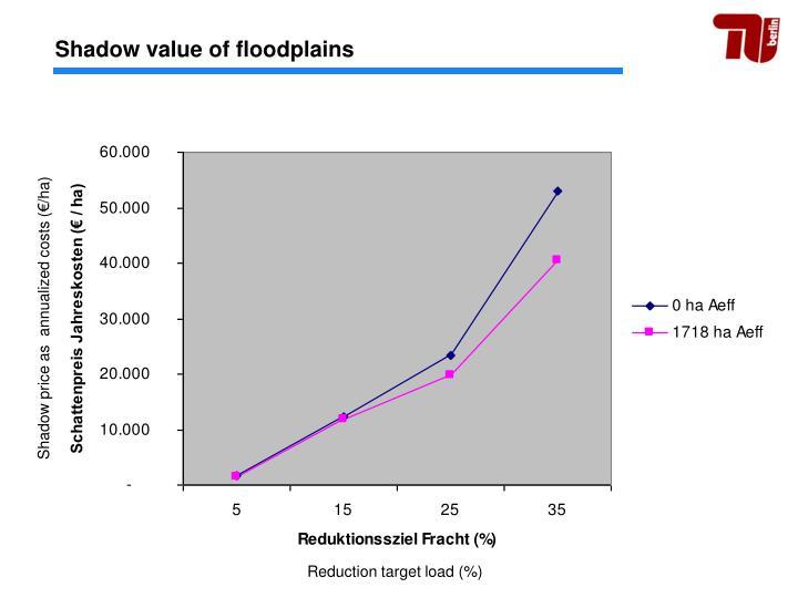 Shadow value of floodplains