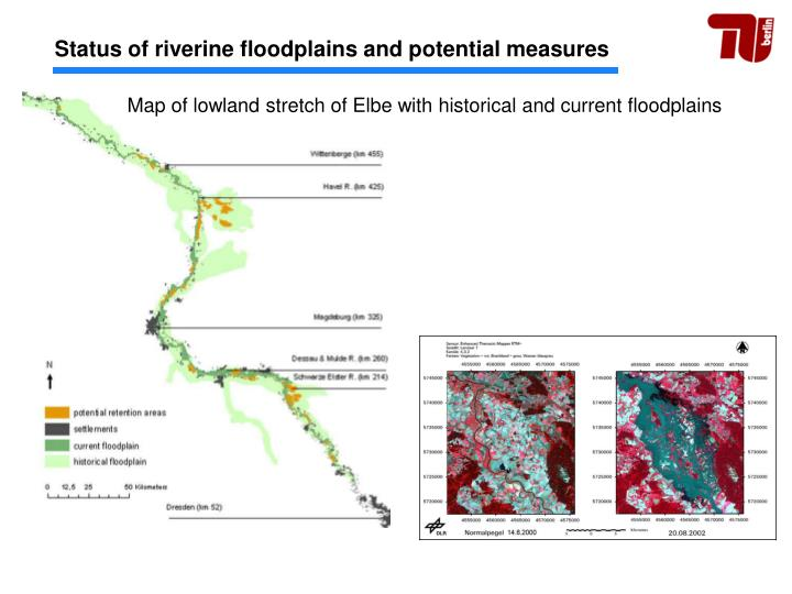 Status of riverine floodplains and potential measures