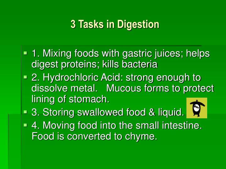 3 Tasks in Digestion