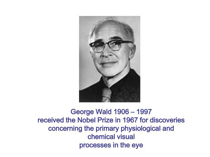 George Wald 1906 – 1997