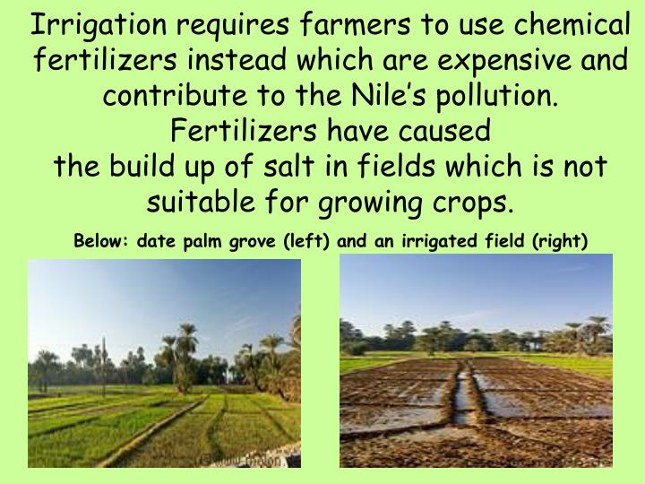 Irrigation requires farmers to use chemical fertilizers instead which are expensive and contribute to the Nile's pollution.