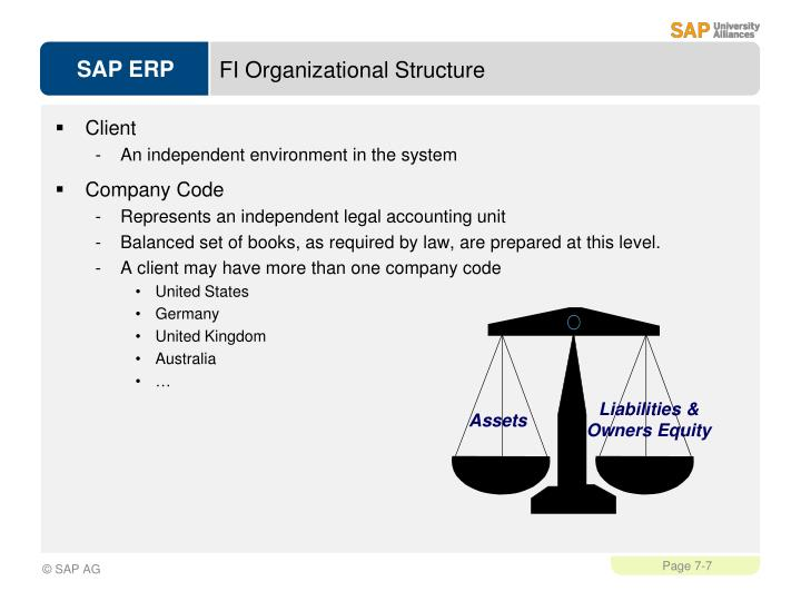 FI Organizational Structure