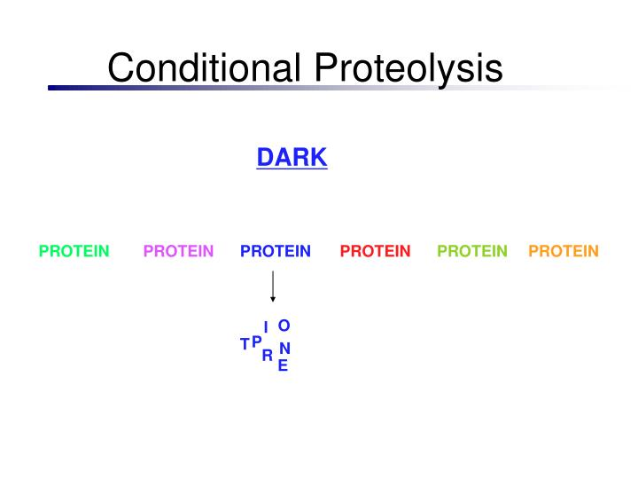 Conditional Proteolysis