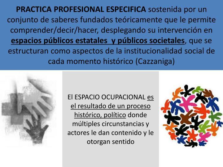 PRACTICA PROFESIONAL ESPECIFICA