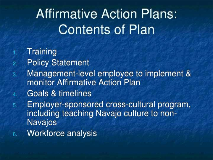 Affirmative Action Plans:  Contents of Plan