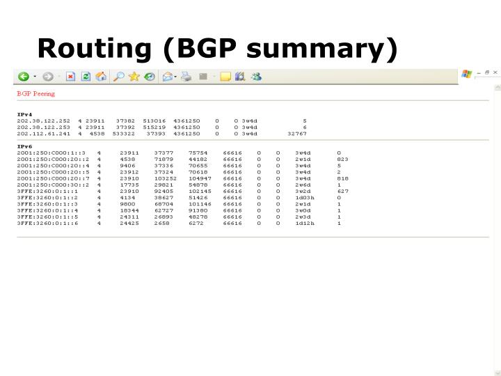 Routing (BGP summary)