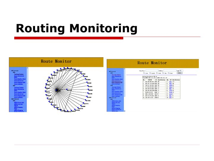 Routing Monitoring