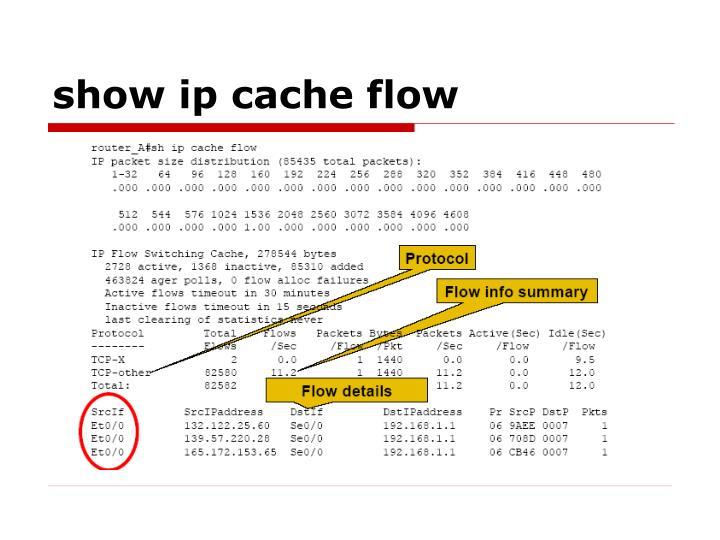show ip cache flow
