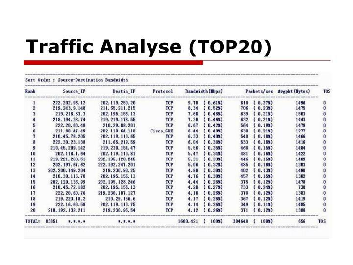 Traffic Analyse