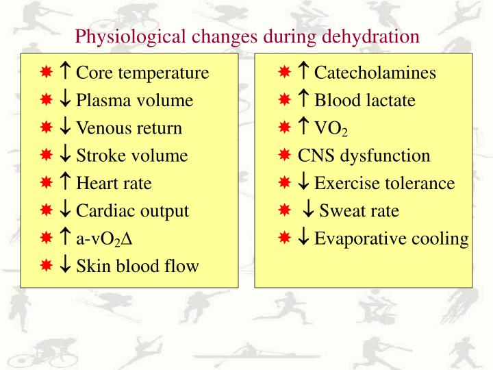 Physiological changes during dehydration