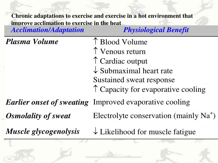 Chronic adaptations to exercise and exercise in a hot environment that improve acclimation to exercise in the heat