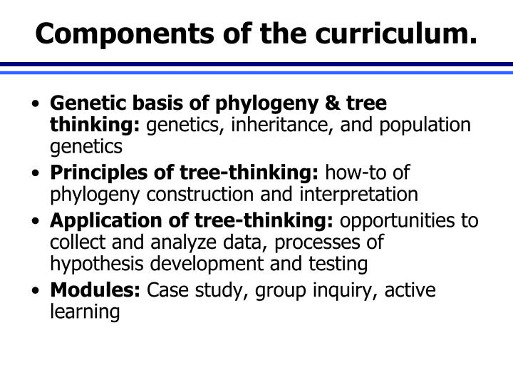 Components of the curriculum.