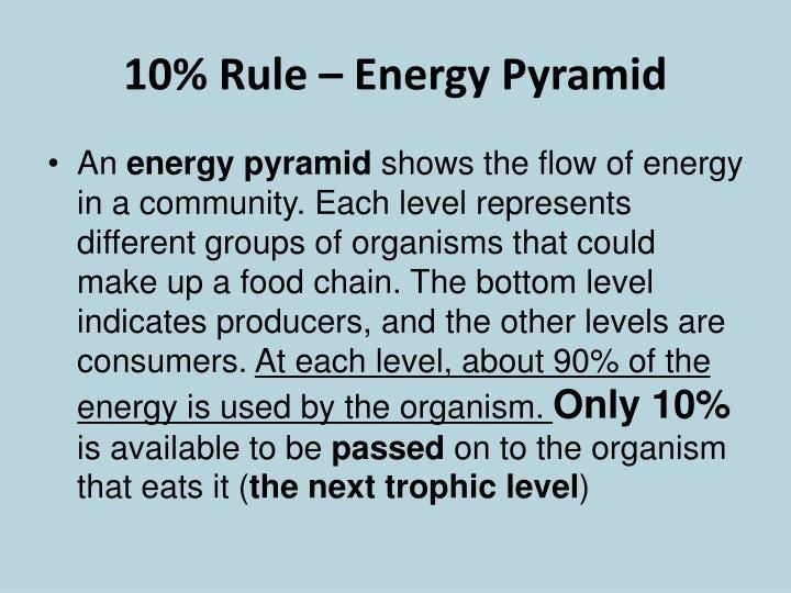 10% Rule – Energy Pyramid