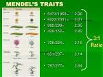 mendel s traits2