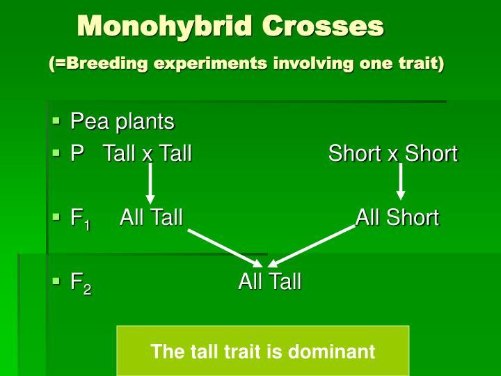 Monohybrid Crosses