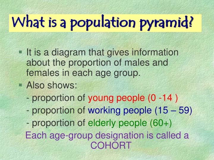 What is a population pyramid?