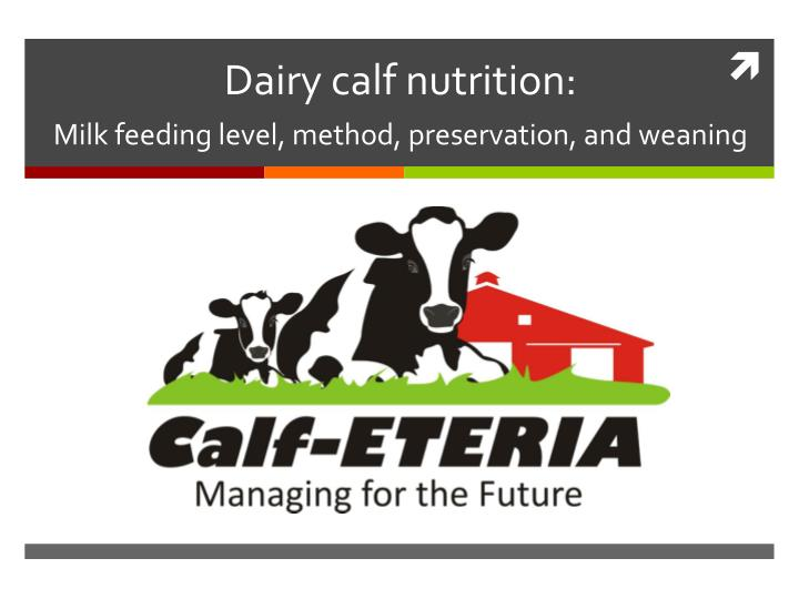 Dairy calf nutrition milk feeding level method preservation and weaning