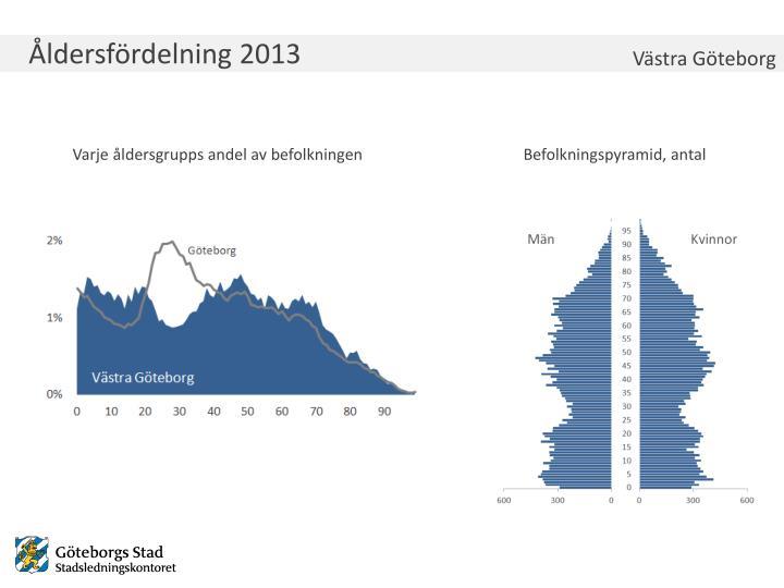 Åldersfördelning 2013