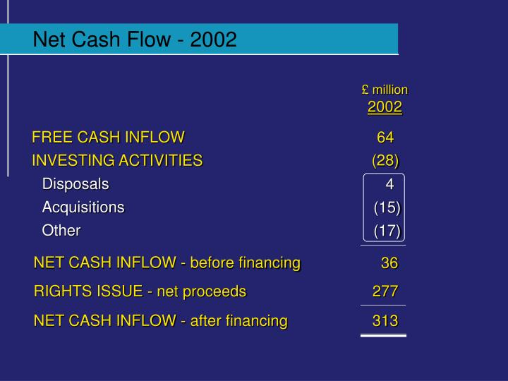 Net Cash Flow - 2002