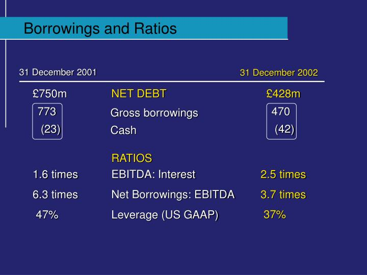 Borrowings and Ratios