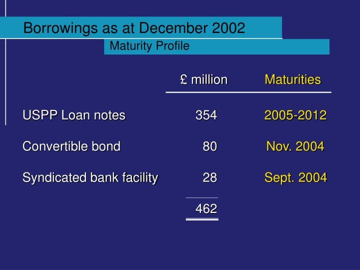 Borrowings as at December 2002