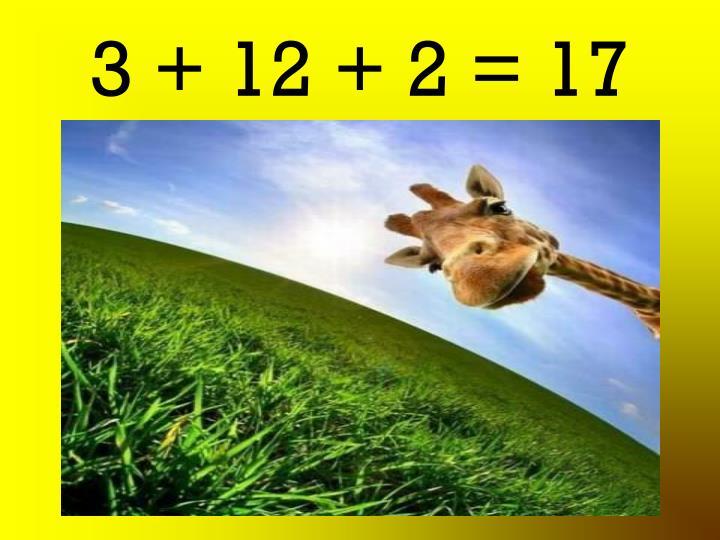 3 + 12 + 2 = 17