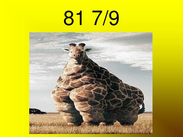 81 7/9