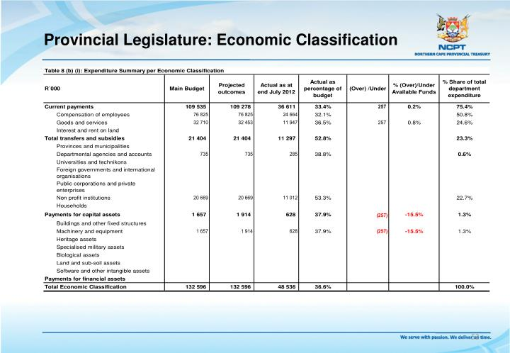 Provincial Legislature: Economic Classification