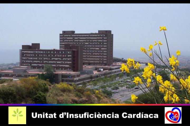 Unitat d'Insuficiència Cardíaca