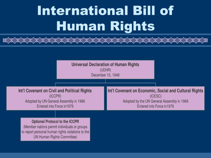 International Bill of