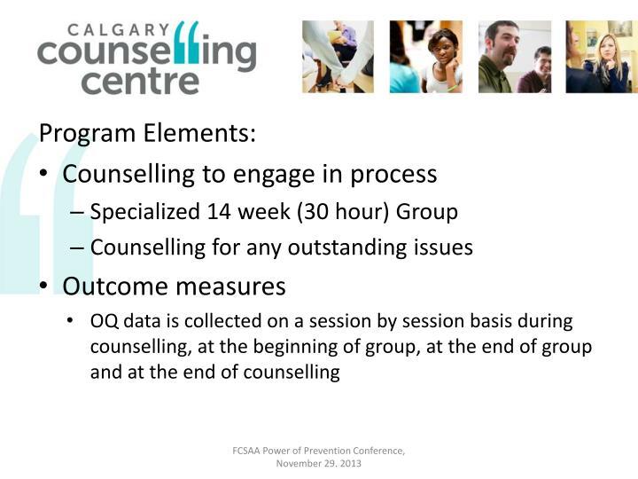 Program Elements: