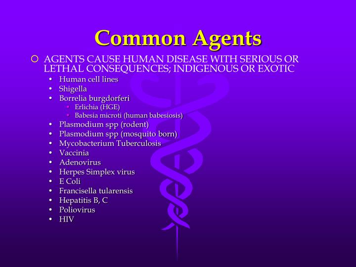Common Agents