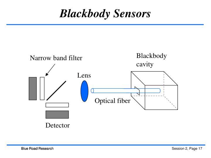 Blackbody Sensors
