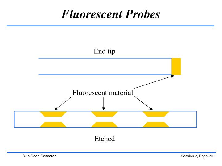 Fluorescent Probes