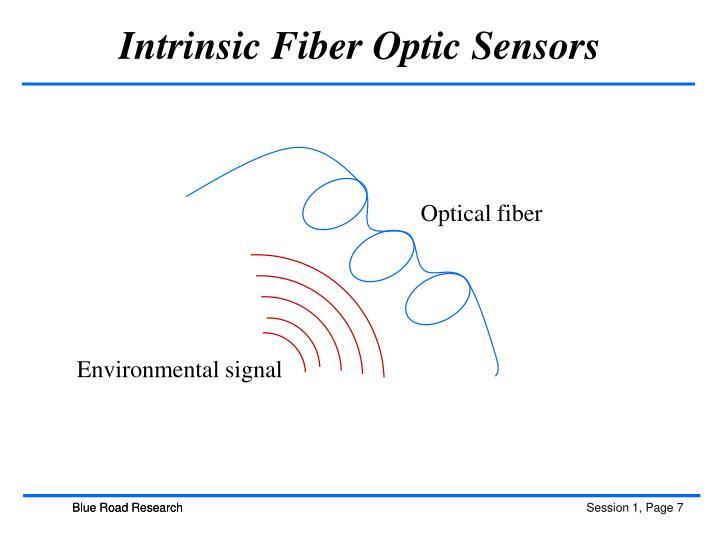 Intrinsic Fiber Optic Sensors