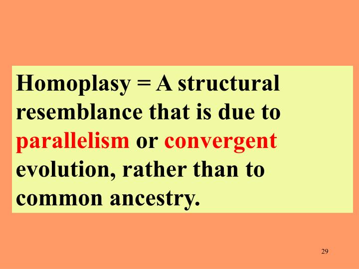 Homoplasy = A structural resemblance that is due to