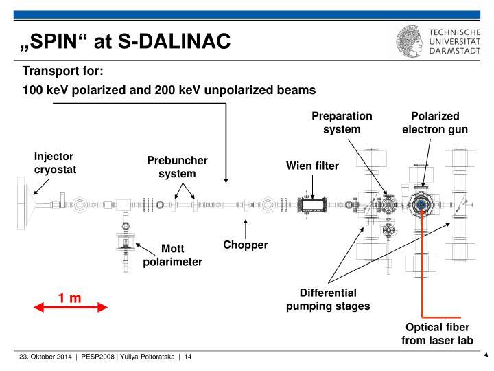 """""""SPIN"""" at S-DALINAC"""