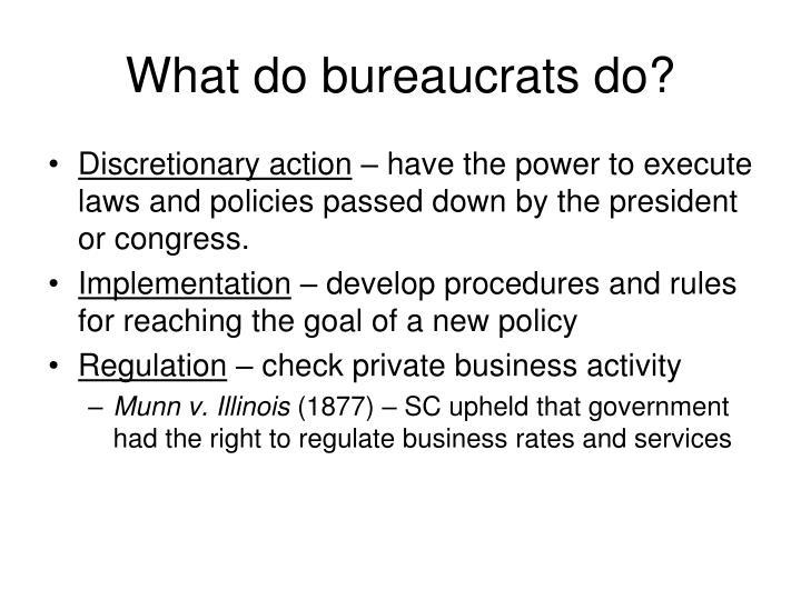 What do bureaucrats do?