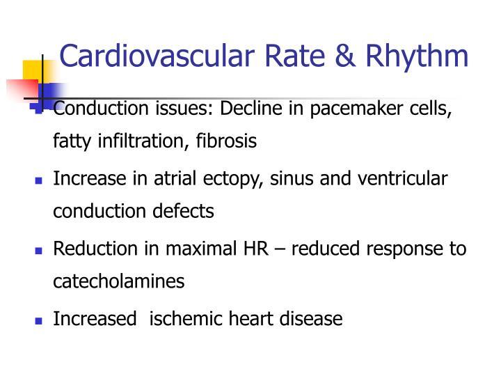 Cardiovascular Rate & Rhythm