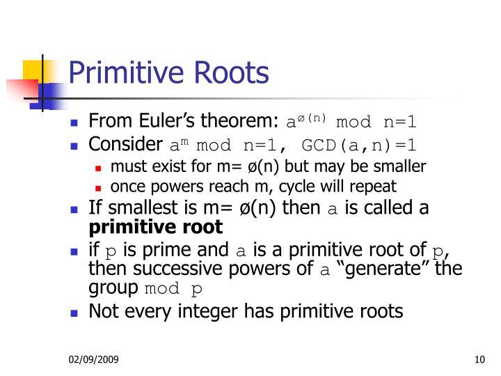 Primitive Roots