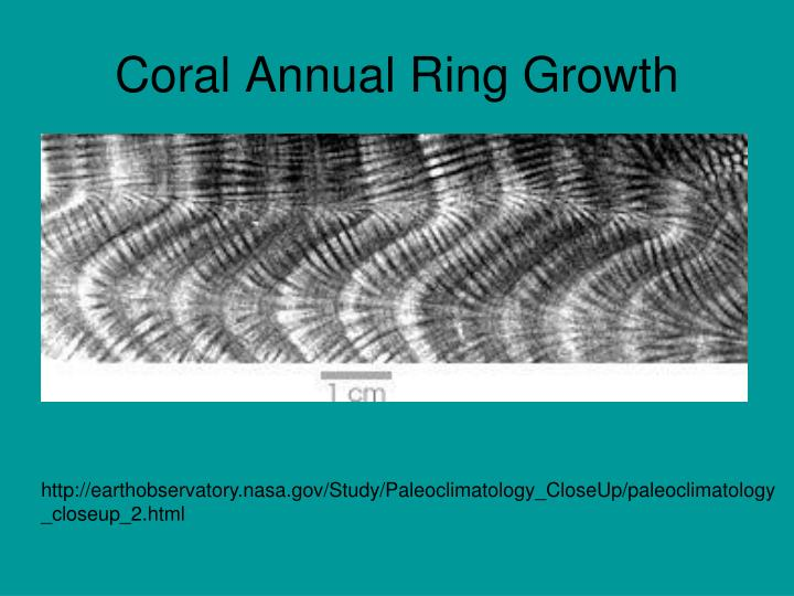 Coral Annual Ring Growth
