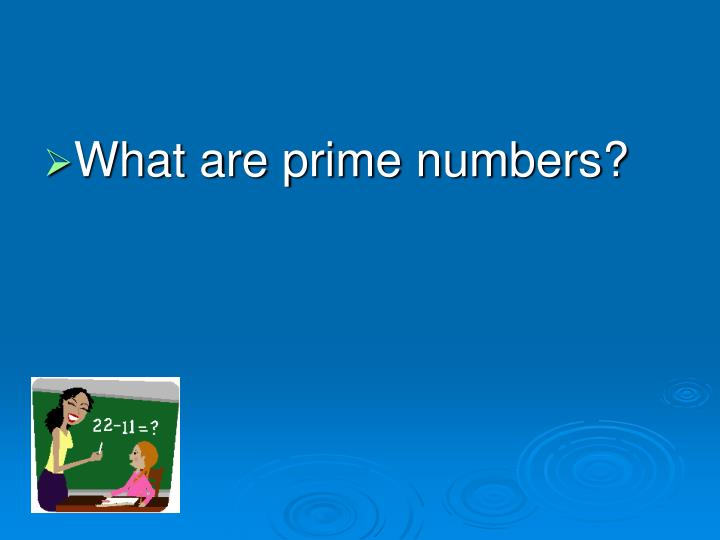 What are prime numbers?