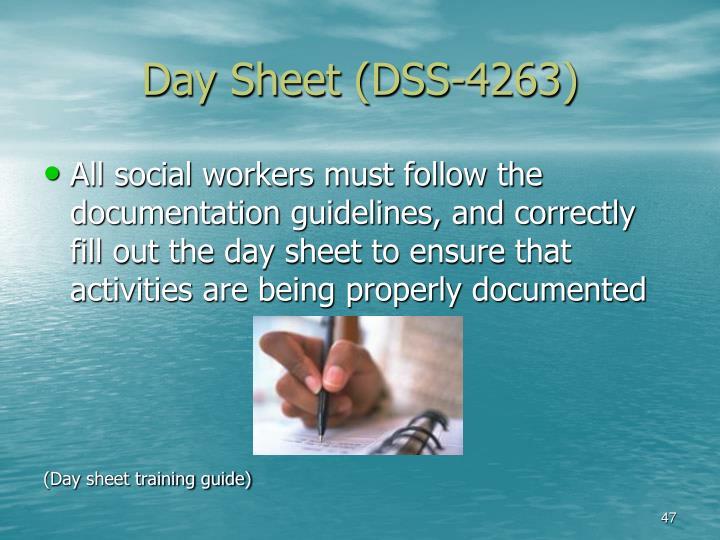 Day Sheet (DSS-4263)