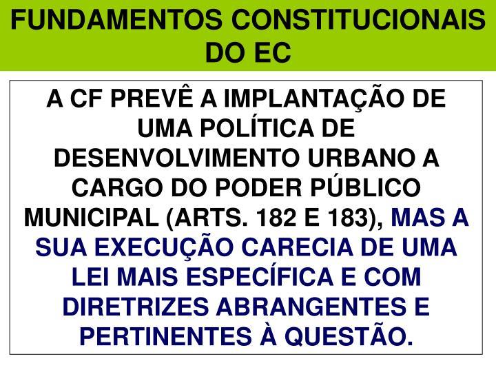 FUNDAMENTOS CONSTITUCIONAIS DO EC