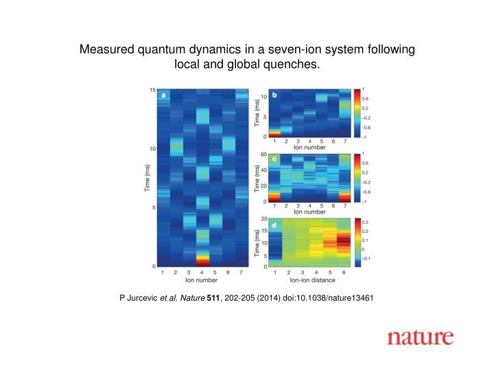 Measured quantum dynamics in a seven-ion system following