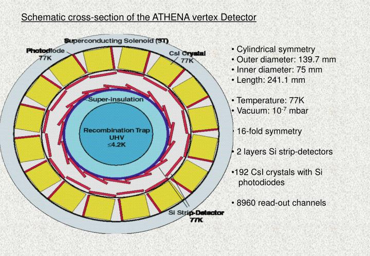 Schematic cross-section of the ATHENA vertex Detector