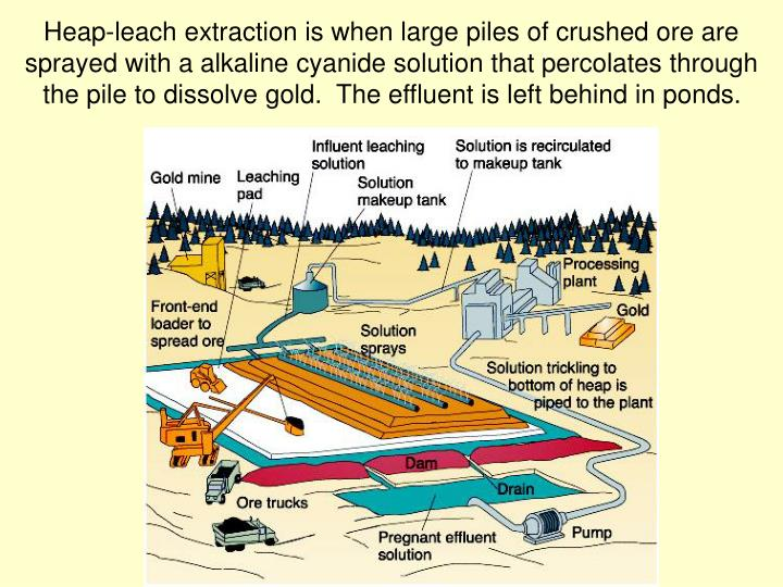 Heap-leach extraction is when large piles of crushed ore are sprayed with a alkaline cyanide solution that percolates through the pile to dissolve gold.  The effluent is left behind in ponds.