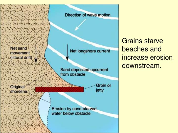 Grains starve