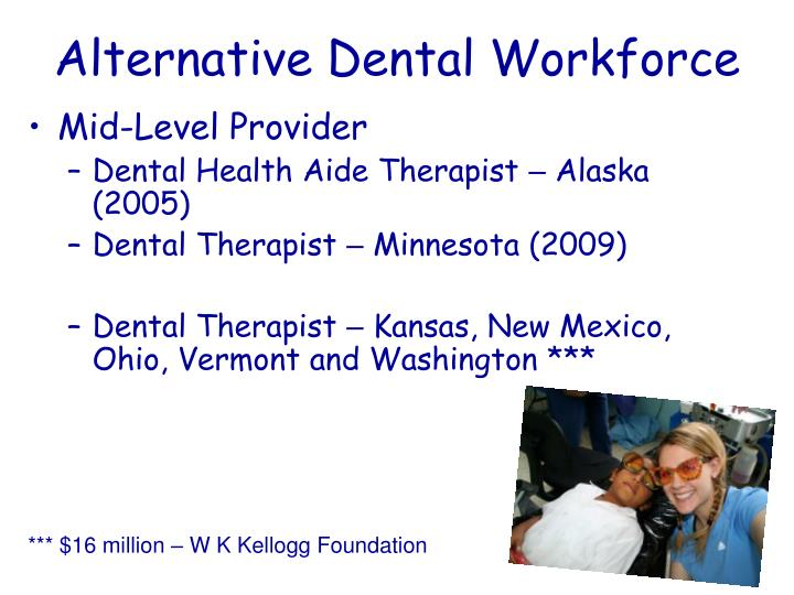 Alternative Dental Workforce