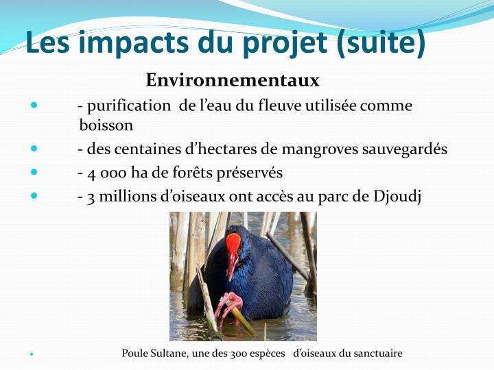 Les impacts du projet (suite)